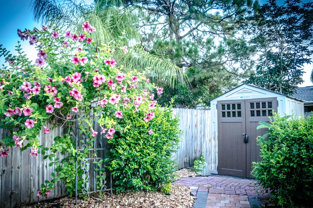 The Benefits of Having Backyard Sheds